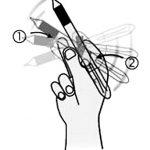 如何绕着大拇指转笔