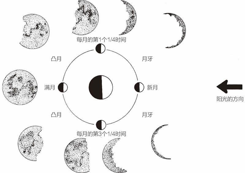 月亮的不同阶段:其位置和月相