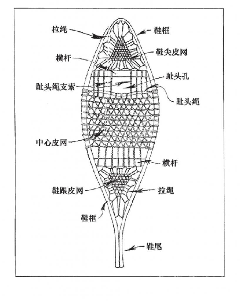 图中显示了雪鞋的一般结构:横杆、皮网以及其他组成部分的名称。