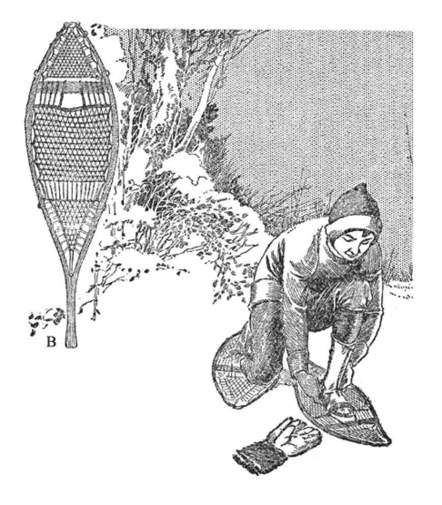 这种雪鞋被认为是东部的一般样式,合适多种地形使用。