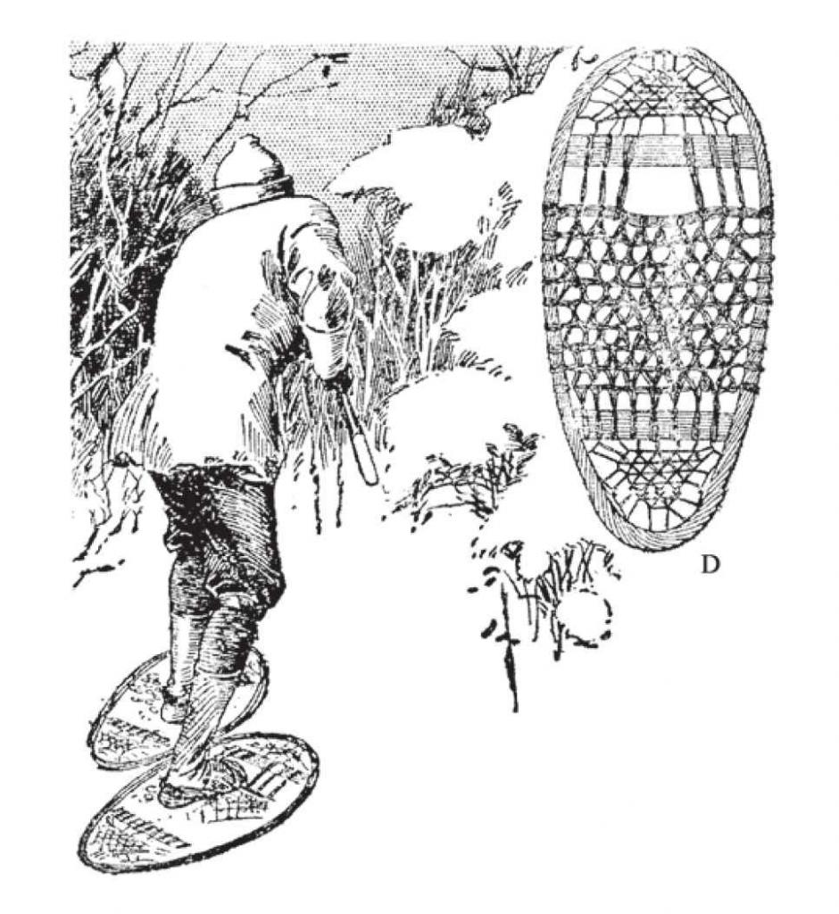 """""""熊掌""""样式的雪鞋是由东北部猎人发明的,适合在树丛行走。"""