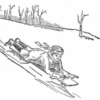 搭乘单轨雪橇能体会到滑行的欢乐和无与伦比的自由感觉