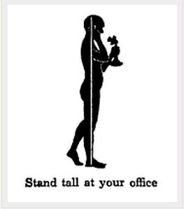 挺拔的站姿可以使人看起来高一点。
