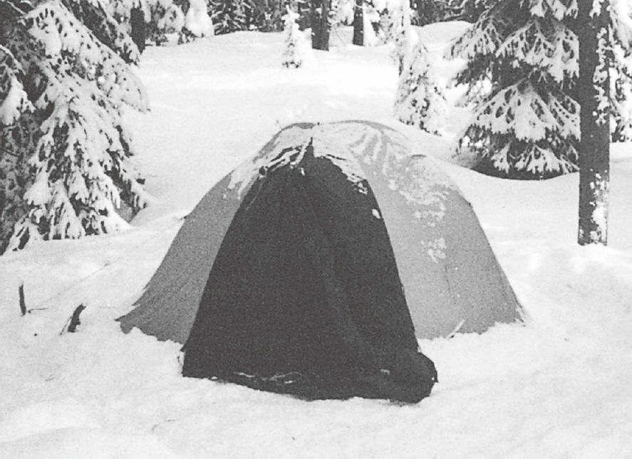 买来的帐篷