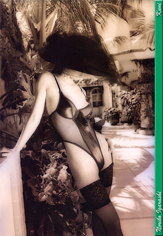 五十岚纪子 Noriko Igarashi