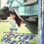 GEKISHA in HAWAII―KISHIN SHINOYAMA 写真封面