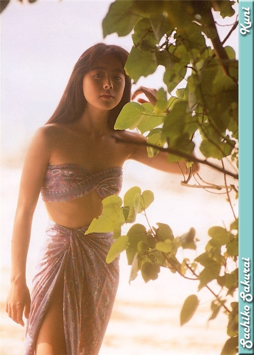 樱井幸子 Sachiko Sakurai